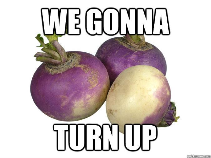 turn up or nah?